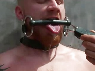 Bound gay humiliated in front of crowd