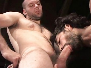 Hairy Muscular Studs Screwing Beside Style