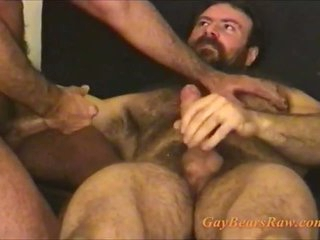 These hairy happy-go-lucky bears are cumming