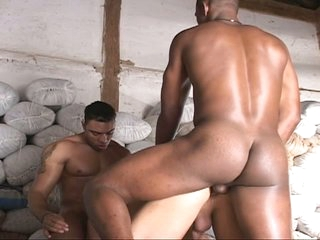 Three well-pleased boys do some heavy ass plugging relative to interracial threesome